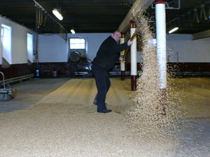 Whisky Tour maltings